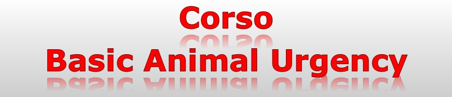Corso basic animal urgency